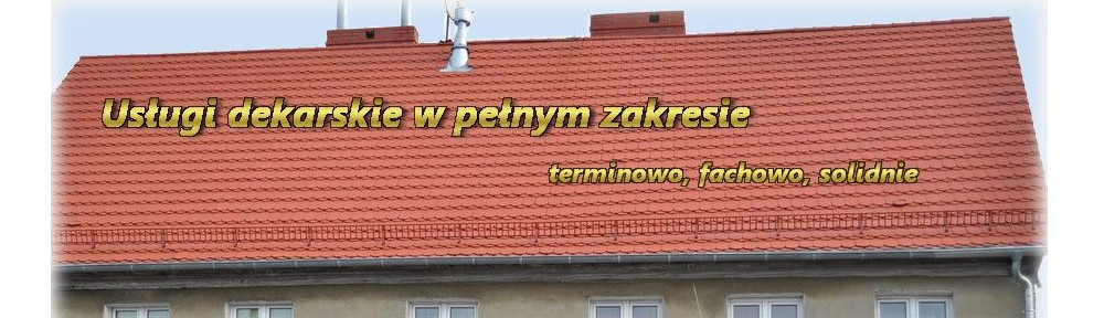 Usługi transportowe i budowlane Bolczak Łukasz